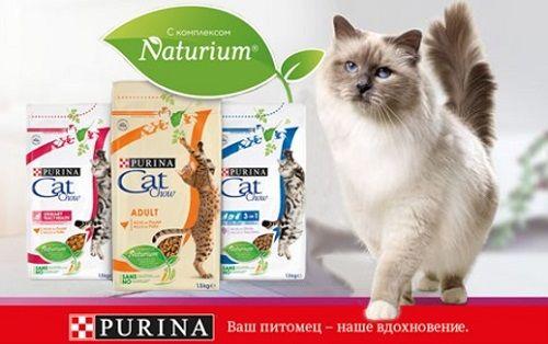 Сухие корма для кошек Пурина Кэт Чау (Cat Chow): Сила и здоровье для Вашей кошки!