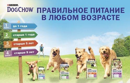 Сухие корма для собак Пурина Дог Чау (Dog Chow) - сбалансированное питание для активной жизни собак!