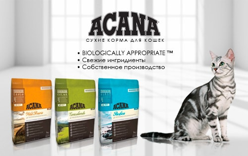 Сухой корм для кошек Акана (Acana) – биологически соответствующее питание!
