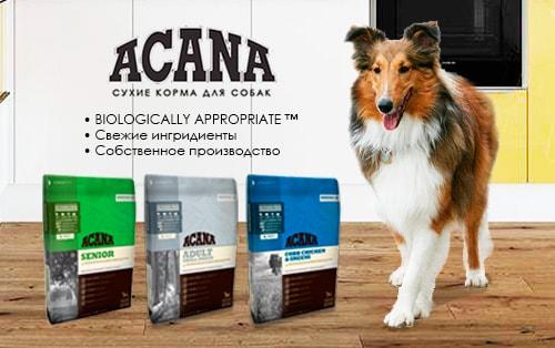 Сухие корма для собак Акана (Acana) – тщательный отбор ингредиентов для Ваших питомцев!