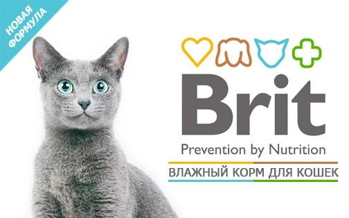 Влажные корма для кошек Брит (Brit) - изготовлены из экологически чистых продуктов!