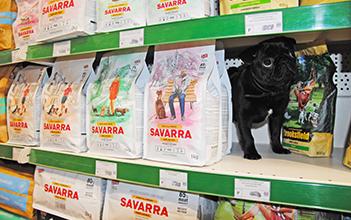 Честный выбор. Саварра для кошек и собак из Великобритании.