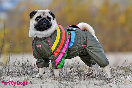ТОП-3 предмета одежды для осенней прогулки