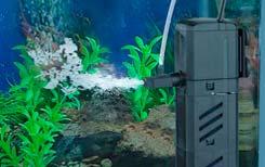 Внутренние фильтры для очистки аквариума