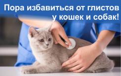 Пора избавиться от глистов у кошек и собак!