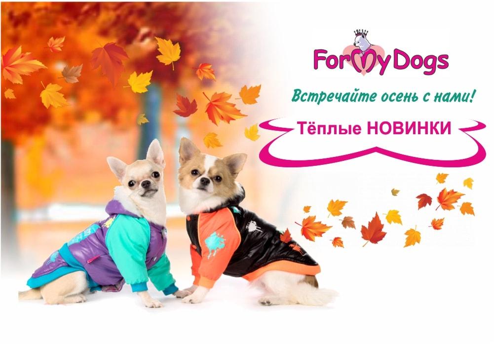 Новинки одежды для собак