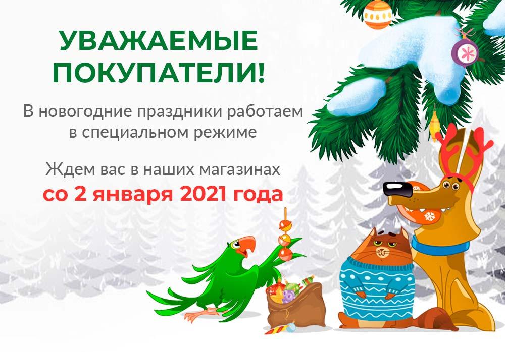 Режим работы в в праздничные дни 2020-2021