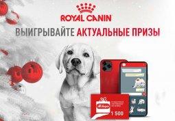 Выигрывайте актуальный призы от Royal Canin