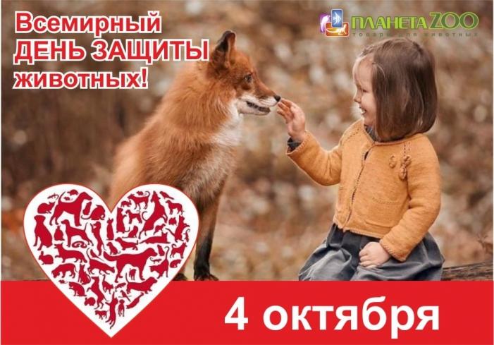 День защиты животных!