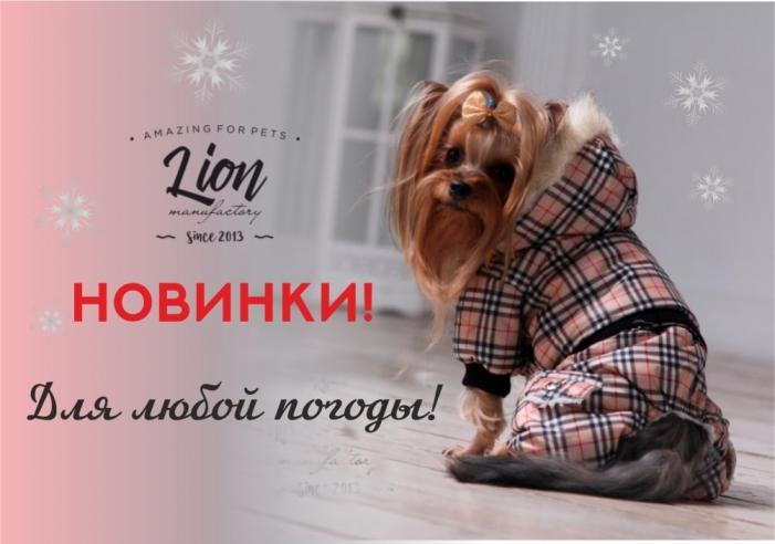 Новинки тёплой одежда Lion
