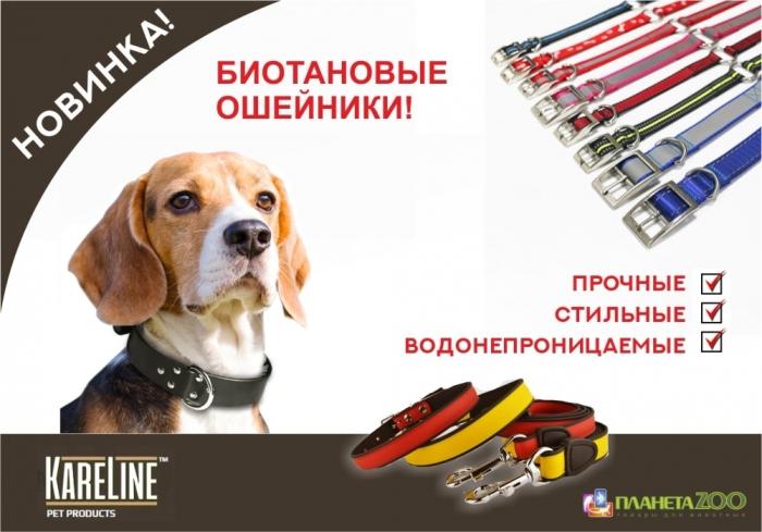 Амуниция Kareline для собак