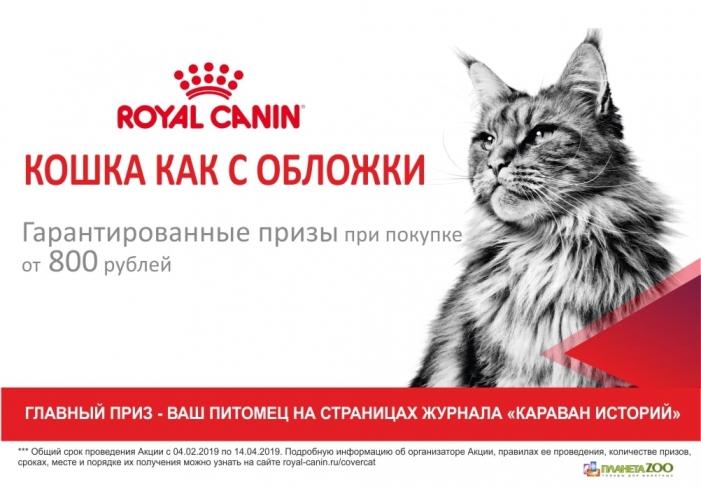 Акция Royal Canin «Кошка с обложки»