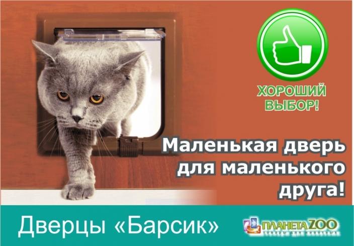 Поступление дверей для кошек Барсик