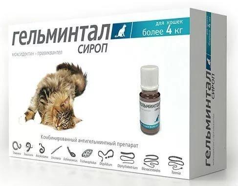 Гельминтал сироп для лечения глистов у кошек более 4 кг