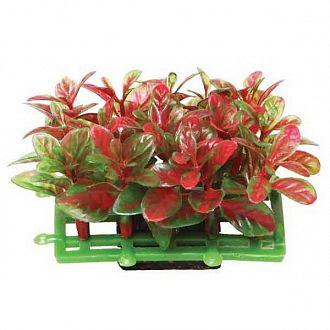 """Растение для аквариума 0559C """"Коврик"""" Laguna красно-зеленый 68х43х45мм"""