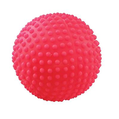 Мяч для собак, игольчатый